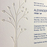Alexander: Bar Mitzvah invitation with navy ink and tree motif