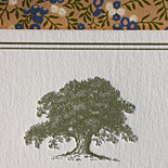 Catalina and Lucas: letterpress invitation with tree motif and garden liner