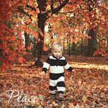 Peace: custom designed photo holiday card