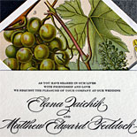 Elana and Matthew: This beautiful grapevine illustration was used for the save the date and became a stunning liner with this elegant letterpress invitation.